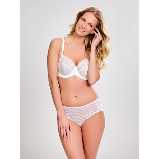 Panache BRIEF   Envy   SALE !!!
