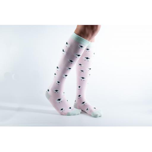 Doris and Dude Long Socks Sheep.jpg